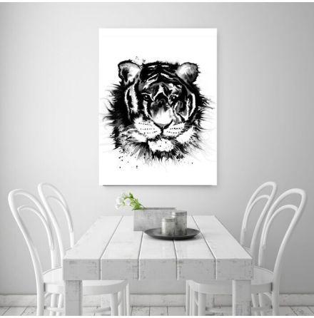 Svartvit tiger 50X70 cm